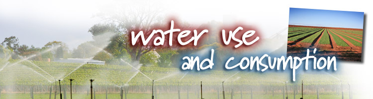 Water Use and Consumption