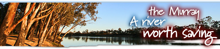 The Murray - A River Worth Saving