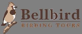 Bellbird Birding Tours