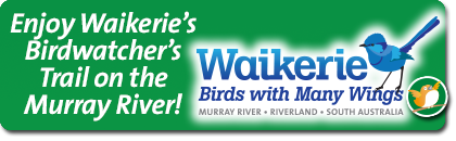 Waikerie Bird Watcher's Trail