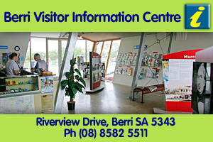 Berri Visitor Information Centre logo