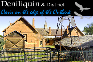 Deniliquin Visitor Information Centre & Peppin Heritage Centre logo