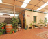 David Shearer Cottage-Mannum: & Palm Courtyard