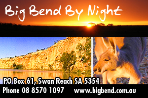 Big Bend By Night Eco Tours