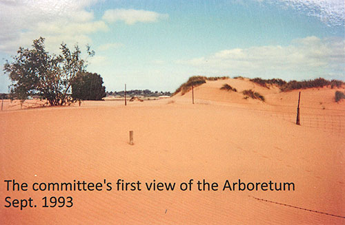 The committee's first view of the Arboretum September 1993