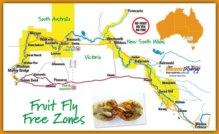 Fruit Fly Free Zone Map