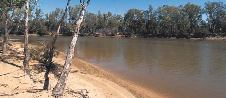 Parks Victoria's & NSW tips for preserving the Murray River