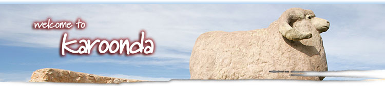 Karoonda Banner Image