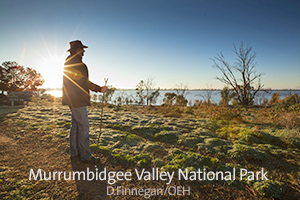 Murrumbidgee Valley National Park
