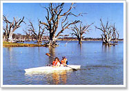 Kayaking on Lake Bonney, Barmera