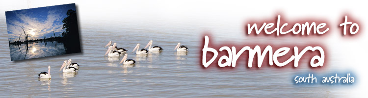 Barmera Banner Image