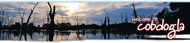 Cobdogla Banner Image
