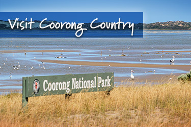 Visit Coorong Country