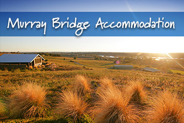 Murray Bridge Things to Do