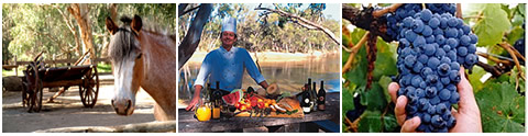 Swan hill food and attractions