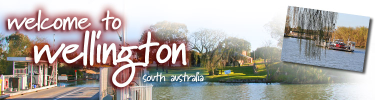 Wellington Banner Image